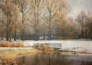 Dutch landscape | by Helaine37