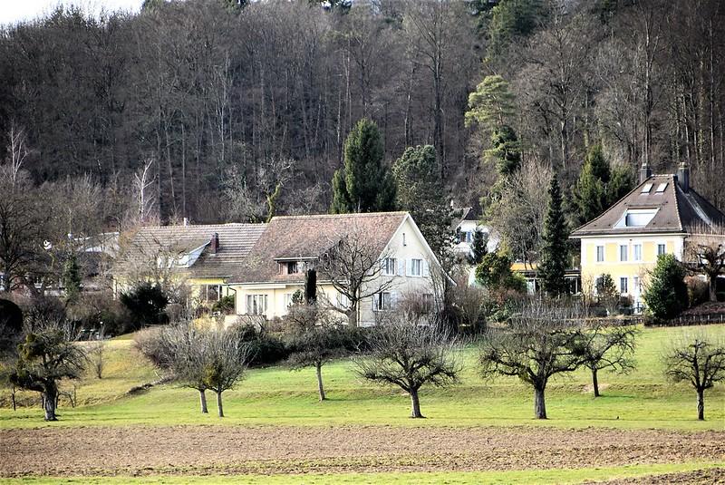Feldbrunnen village 23.02 (16)