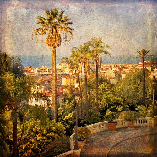 Rita Crane Photography: Menton / France / Cote D'Azur / Mediterranean / mimosa / palm trees / texture / rooftops / View from the Gardens, French Riviera | by Rita Crane Photography