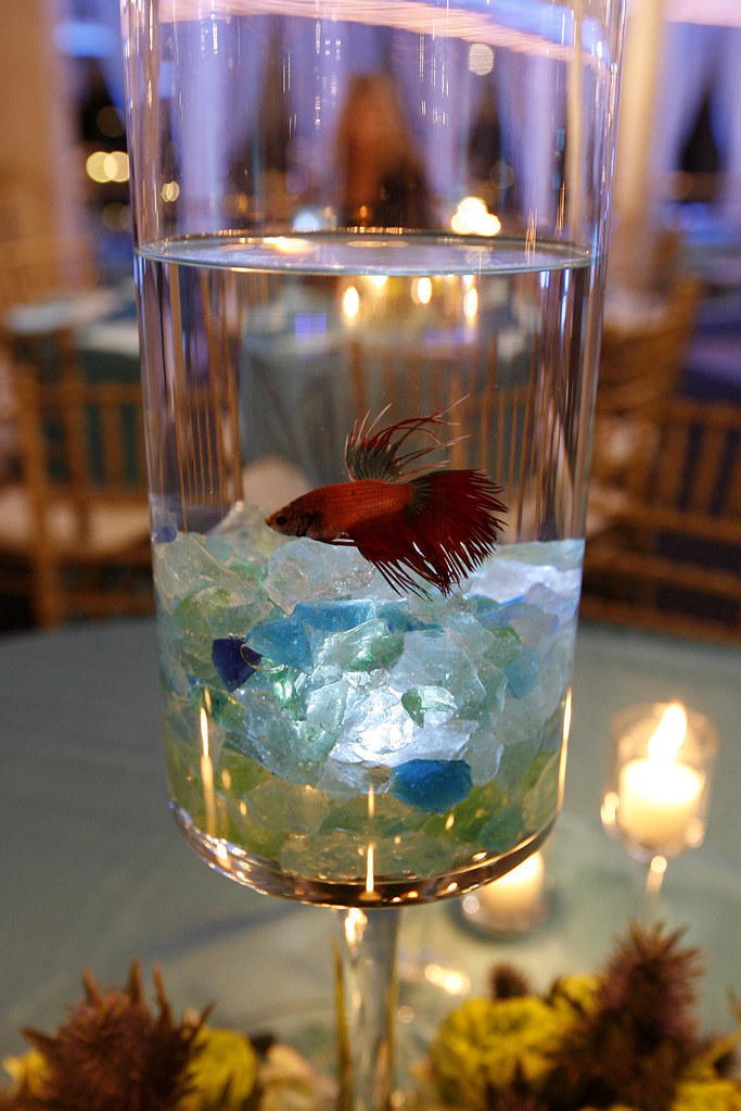 Nautical themed event at fantasea yachts and yacht club for Fish wedding centerpieces