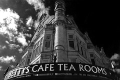 Harrogate Tea Rooms Yorkshire
