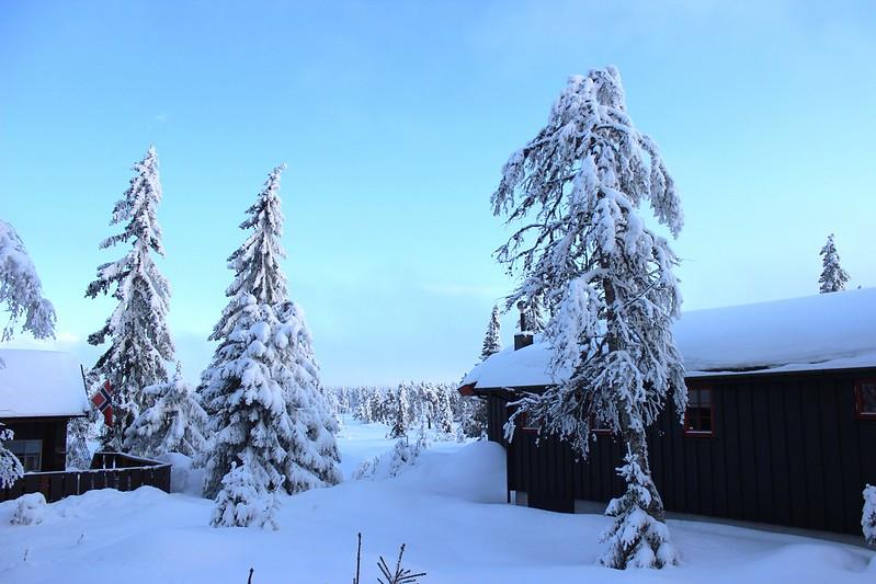 Snow / etdrysskanel.com