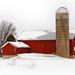 Farmstead, A Winter in Wisconsin