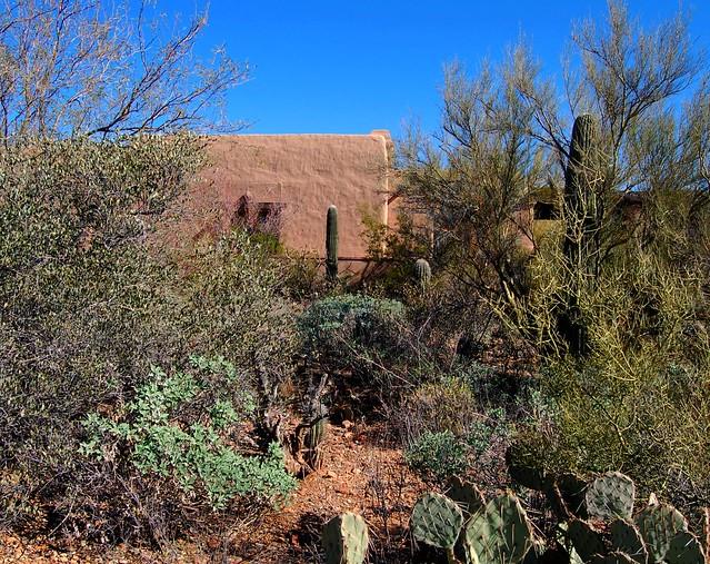 Arizona Sonora Desert Museum Tucson Flickr Photo Sharing