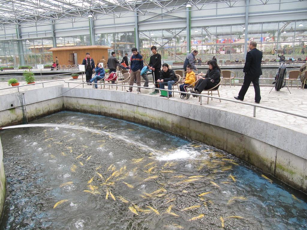 Indoor fishing beijing china indoor fishing beijing for Indoor fishing