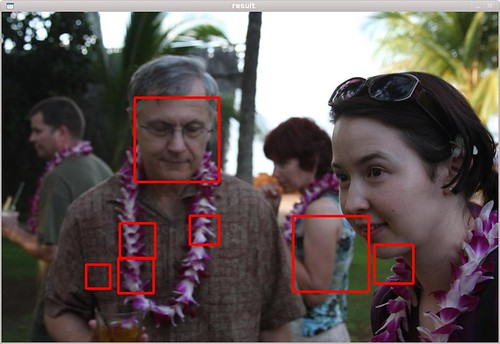 Face Detection Example (Bogdan and Anne) | by mr. 'sto