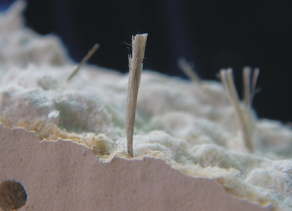 Amosite Asbestos Ceiling Tile Detail View Of Asbestos