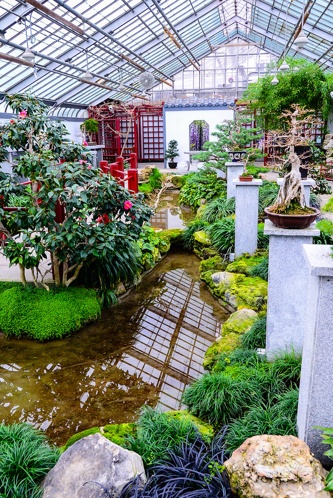 Indoor Japanese Garden | By Mistercgg Indoor Japanese Garden | By Mistercgg