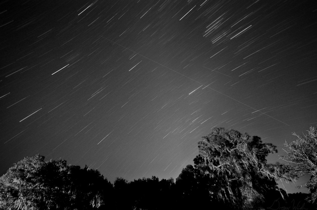 Leonids Meteor Shower 2009 Leonid Meteor Shower 2009