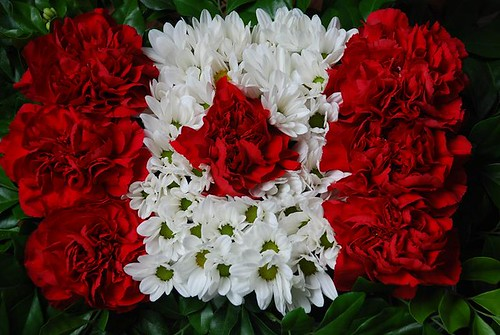 Flower Flag Seven Red Carnations A Bunch Of White