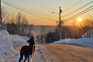 Hallowell, Maine and Moxie | by Anna McDermott