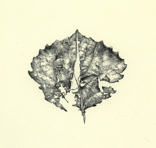 Leaf (Heart of Winter) | by Yaroslav Gerzhedovich