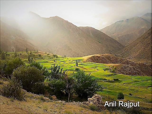 LOC Village Kaksar , Kargil