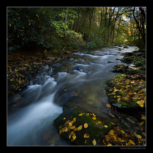 Great Smoky Mountains Fall stream | by tompost