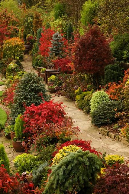 Path Through The Autumn Upper Garden (October 29