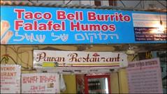 Taco Bell in Pushkar, India | Pushkar, Rajasthan, India Taco… | Flickr