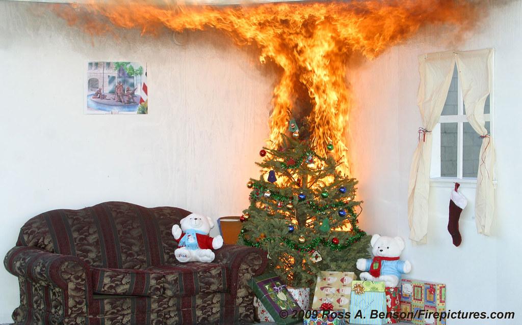 xmas tree burning demo 1 by bfd photo 1