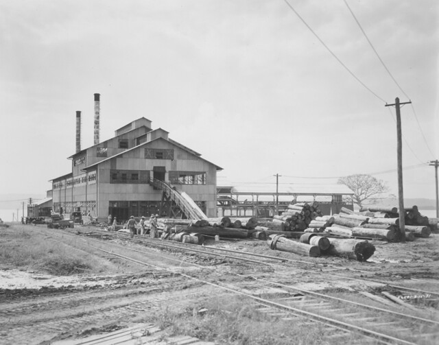 Fordlandia saw mill, ca. 1931.