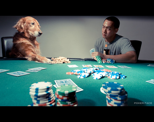Poker Face (Explored fp) | by lawrencechua