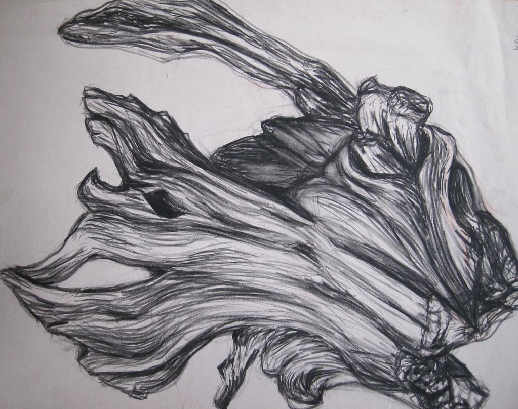 Tree Log Drawing Tree Log Drawing   by