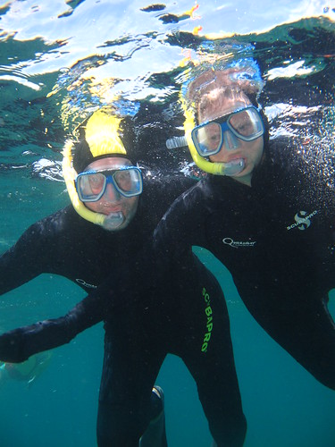 Snorkelling the Great Barrier Reef | by Carves Sud