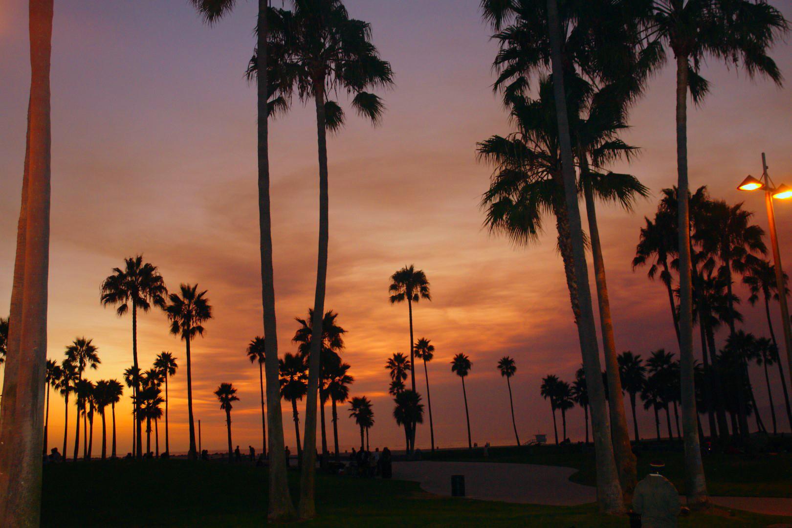 Qué hacer y ver en Los Ángeles los angeles - 31975899203 dfe853c696 o - Qué hacer y ver en Los Angeles
