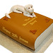 Never Ending Story Book Cake with Falcor Topper
