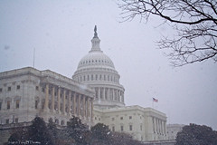 20100130C_Capitol06 | by Troy Thomas