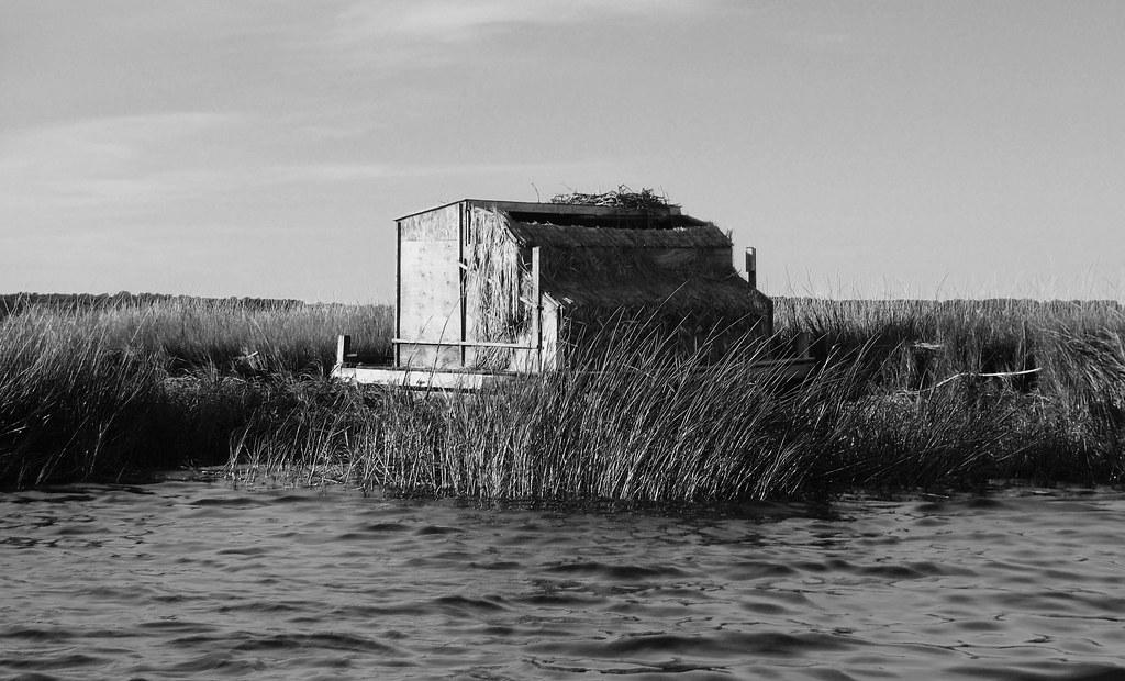 Long Island Duck Hunting Club
