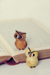 A Literary Pair | by Artful Magpie