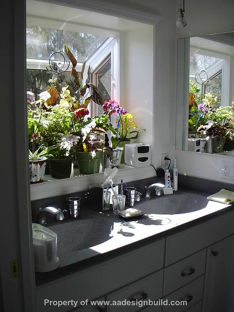 Garden window in master bathroom c for Garden design windows 7