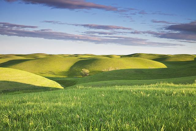 green hills of earth  dunnigan hills  california