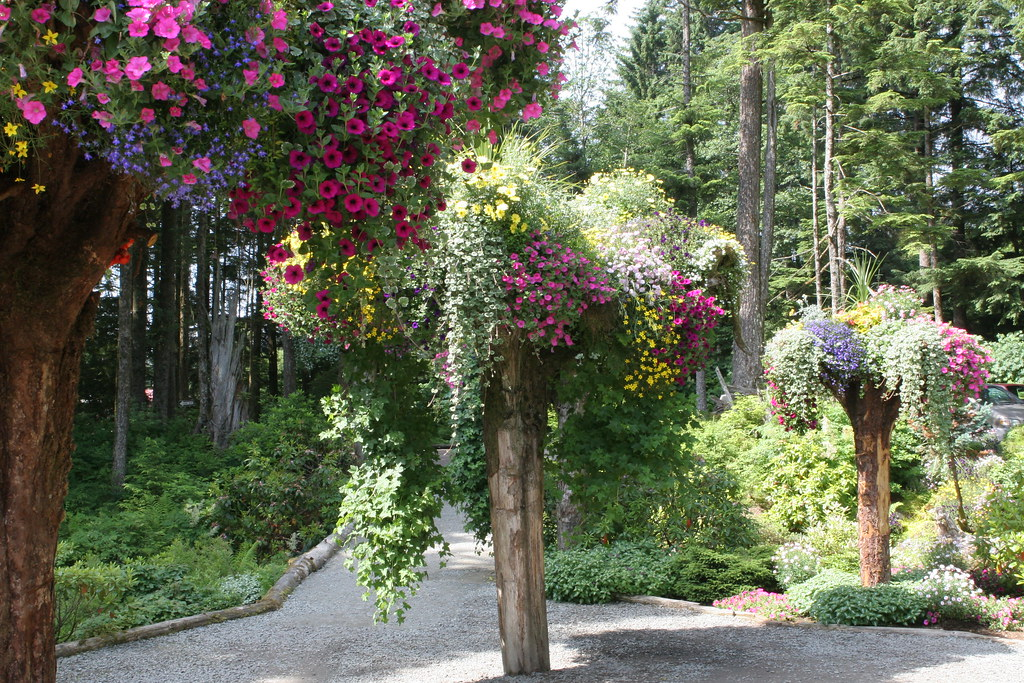 Glacier Gardens Juneau Ak These Are The Famous Up