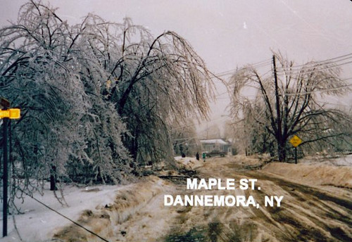 Ice Storm Maple Street In The Village Of Dannemora
