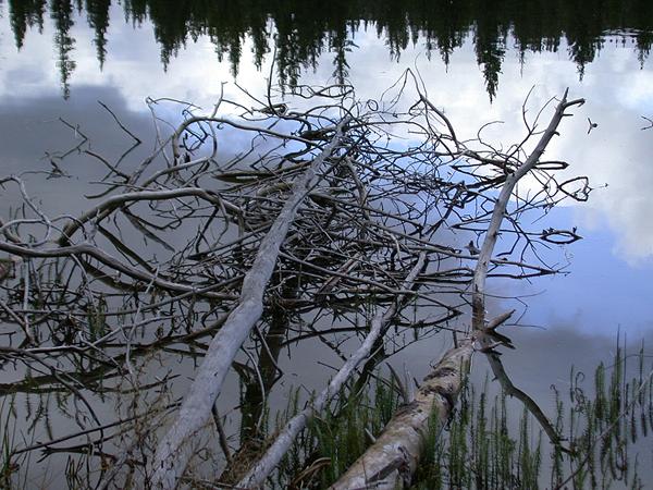Glimpse Lake
