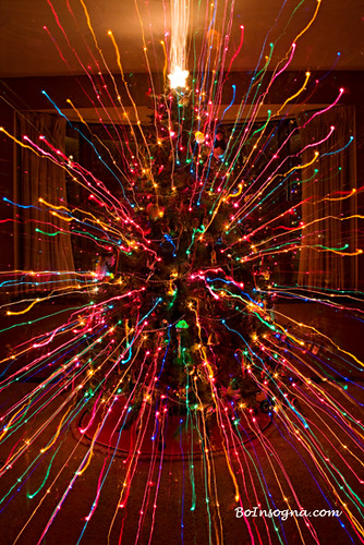 3 Christmas Tree Set