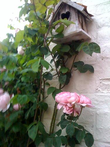 Decoration jardin decoration de jardin aupr s du rosier c flickr - Decorations de jardin ...