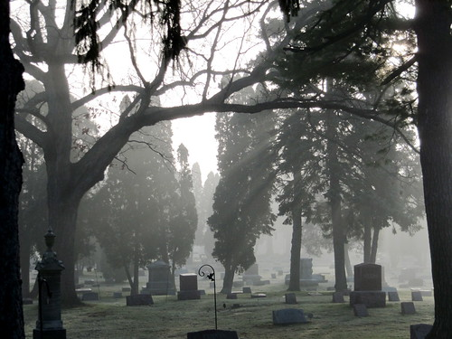 A foggy morning in the cemetery | by rkramer62