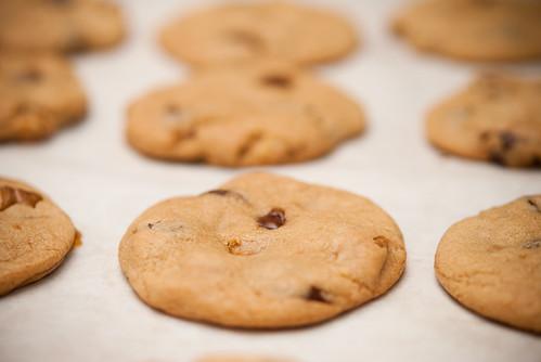 caramel chocolate chip walnut cookies 焦糖朱古力核桃曲奇 ...