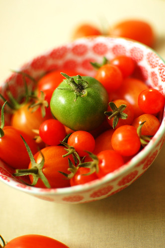 More tomatoes | by Istelleinad