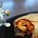 # 29/100 -- Burrito Bugs