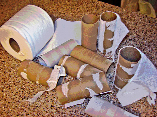 Toilet Paper Cardboard Tubes  ~ 4 of 9 photos | by Urban Woodswalker