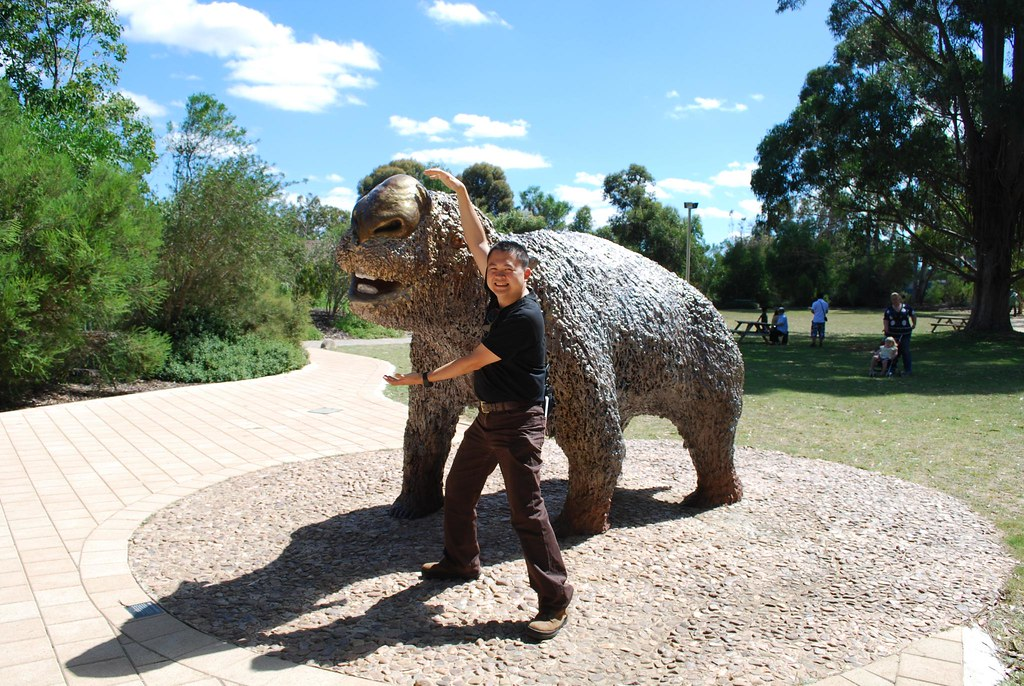 Image result for Diprotodon optatum