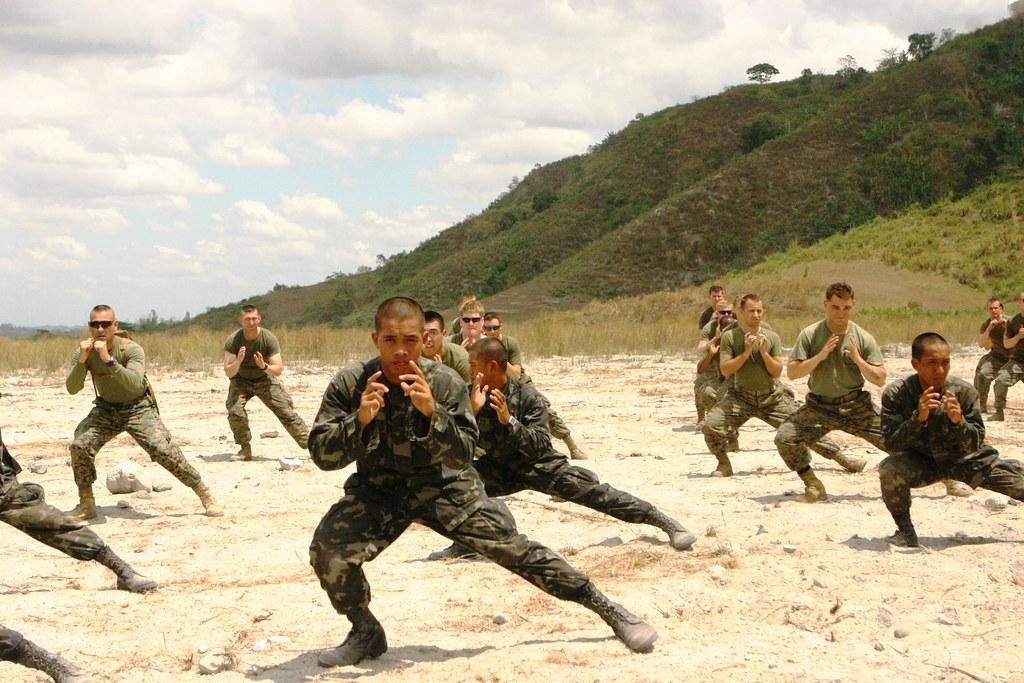 Marine Corps Martial Arts training | Republic of the Philipp… | Flickr