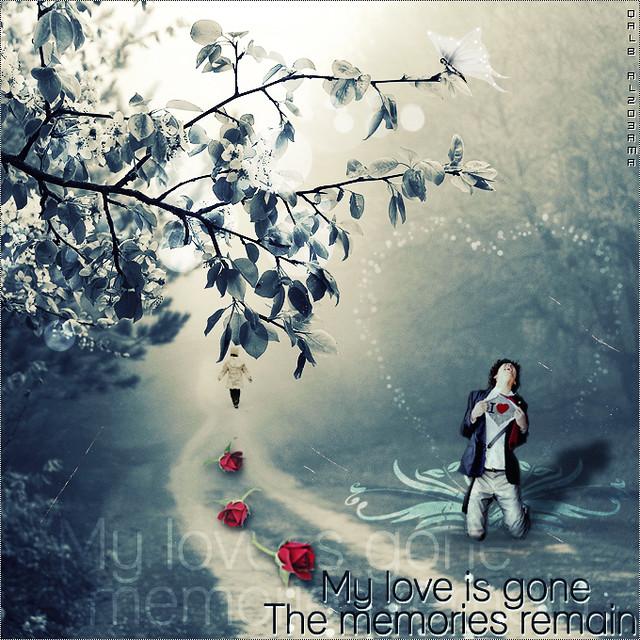my love is gone adel al jurayyan flickr