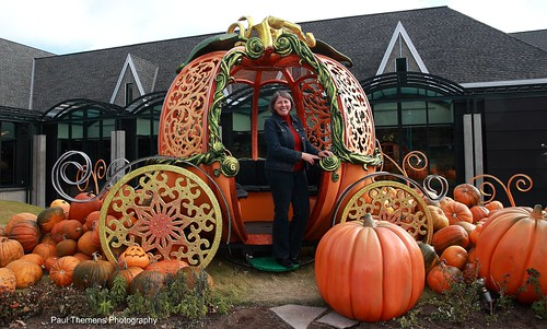 Halloween Decoration D 39 Halloween My Better Half Posing For Flickr