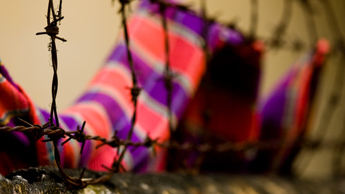 A pink and purple scarf imprisoned by barbed wire. | by Rowan Gillson