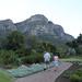 Walking in Kirstenbosch, Cape Town
