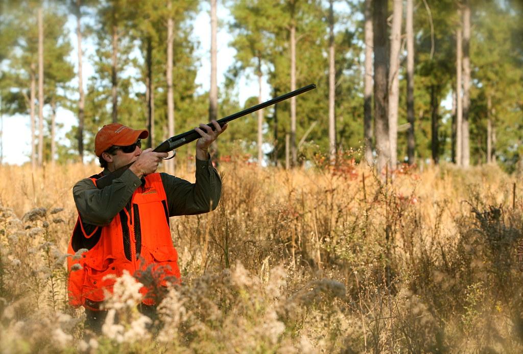 Beaver Creek Quail Hunting Torrey Wiley Flickr