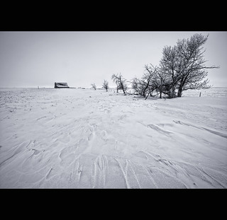 Prairie Winter | by Ernie Fischhofer